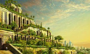 Сады семирамиды на вашей крыше