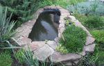 Пруд из старой ванны шаг за шагом. фото