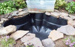 Как сделать пруд на участке из пластиковой чаши?
