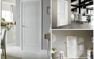 Белые межкомнатные двери в интерьере : недорогие варианты