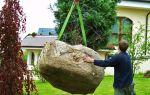 Посадка крупномеров в саду