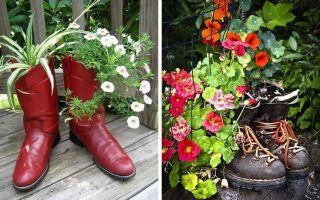 Цветочный горшок из туфли